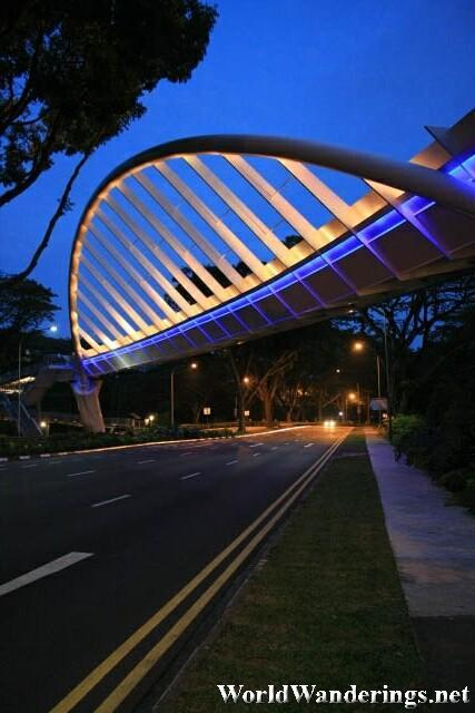 Alexandra Bridge at Night
