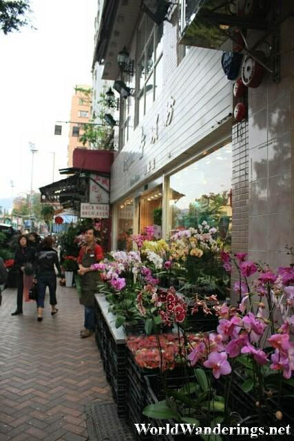 Row of Flower Shops are the Flower Market in Hong Kong
