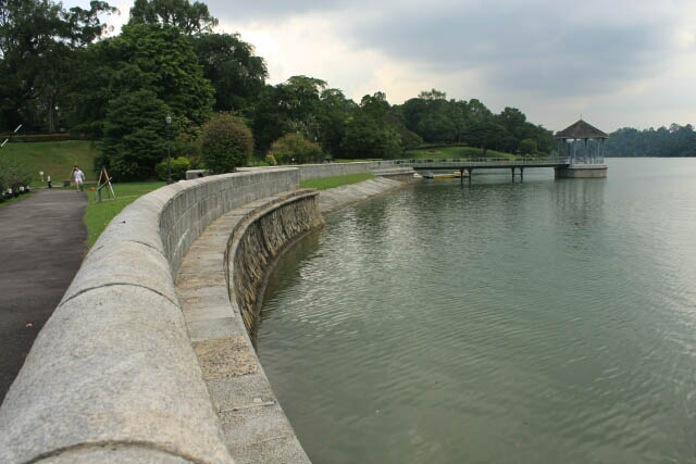 Walking Along the MacRitchie Reservoir