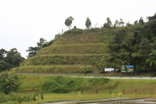 View of the Hillsides in Cameron Highlands