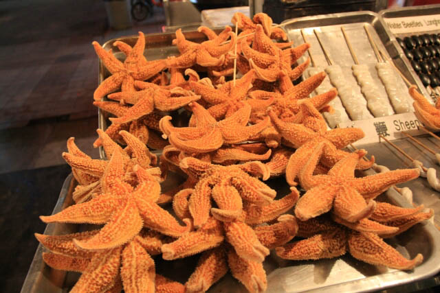 Starfish Anyone?