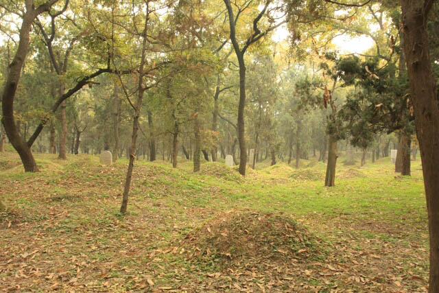 Mounds at the Confucius Forest 孔林