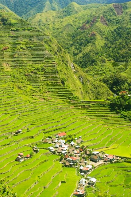 View of Small Village in Batad