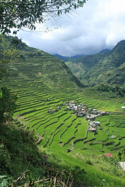 Stunning View of the Batad Rice Terraces