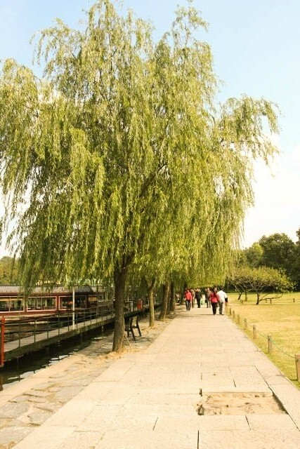 Walking Along the West Lake 西湖