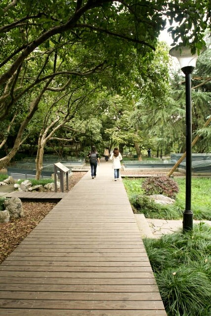 Boardwalk at Zhongshan Park 中山公园 in Hangzhou 杭州