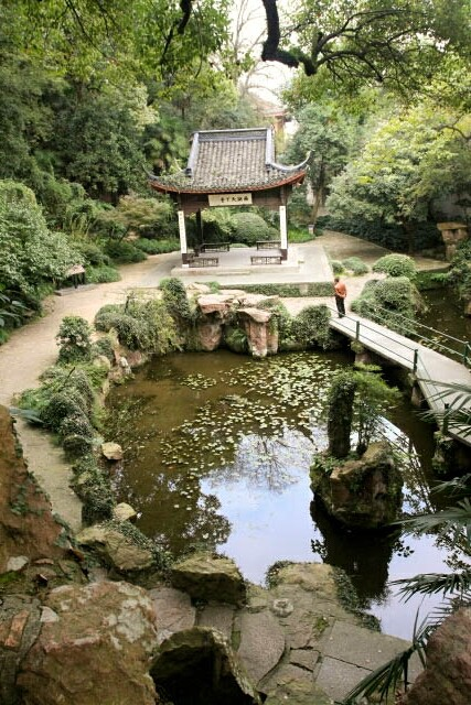 Nice Pond with Pavillion at Zhongshan Park 中山公园