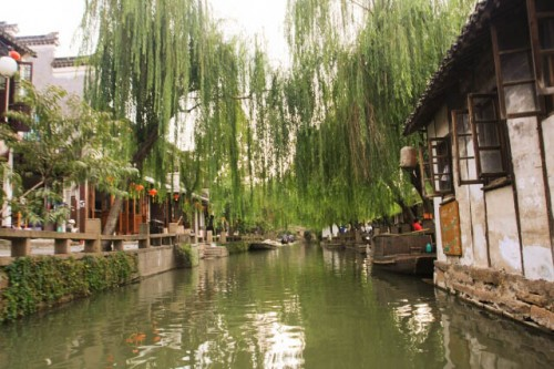 IMG 8992 500x333 Exploring the Beauty of Zhou Zhuang by Boat