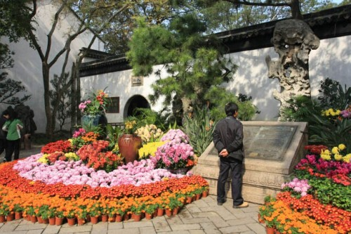 Going to the Humble Administrator's Garden 拙政园