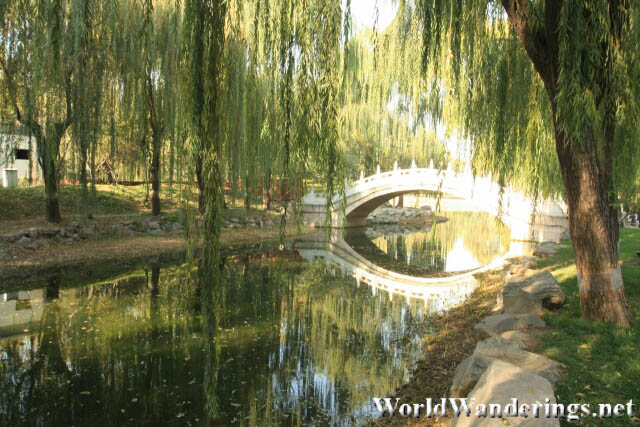 Stream with a Chinese Bridge in the Yuanmingyuan Park 圆明园