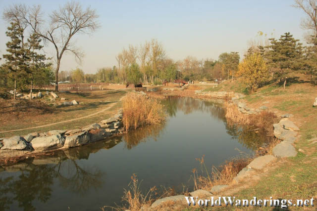 Quiet and Desolate Stream in Yuanmingyuan Park 圆明园