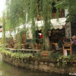 Willow Trees Enhance the Beauty of the Lijiang Ancient Town 丽江古城