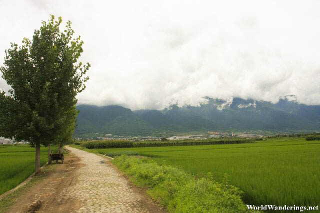 Looking Back at Dali and the Cangshan Mountains
