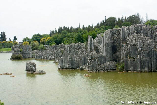 Karst Formations at the Stone Forest 石林 in Yunnan 云南