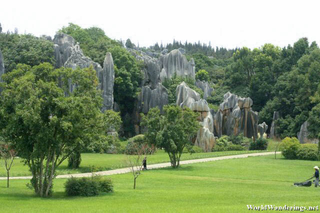 Nicely Trimmed Grass at the Stone Forest 石林 at Yunnan 云南