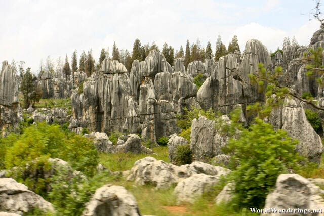 Dense Karst at the Stone Forest 石林 in Yunnan 云南