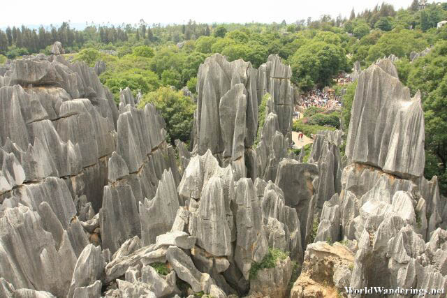 View of the Karst of the Stone Forest from Above