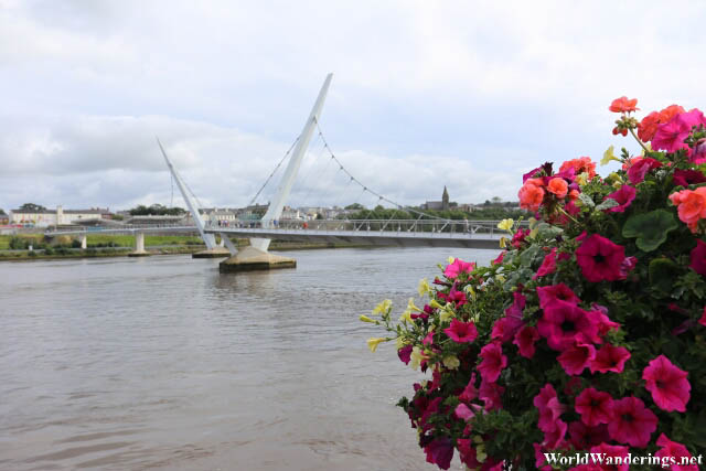 Peace Bridge Across the River Foyle in Derry-Londonderry