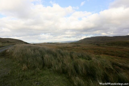 Powerful Winds Sweep Through the Fields at Lough Agher