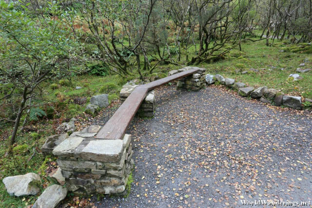 Some Benches at Glenevin Falls