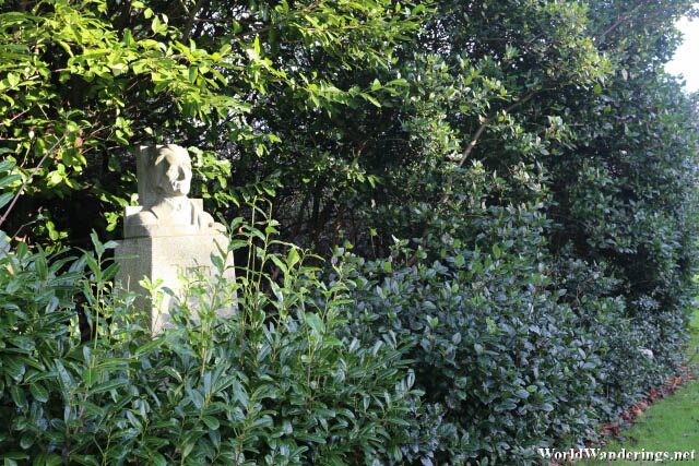 Bust in the Bushes at Merrion Park in Dublin