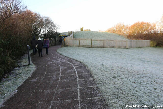 Frosty Grass at the Newgrange Visitor Center Bus Station