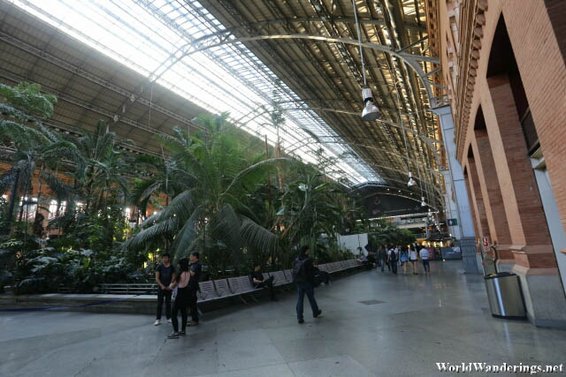 Park Inside the Madrid Atocha Railway Station