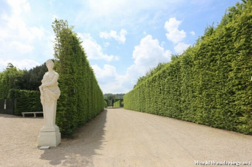 Very Tall Hedges at the Gardens of Versailles