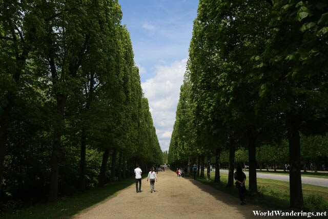 Walking to the Grand Trianon at the Palace of Versailles