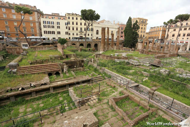 Ruins at the Largo di Torre Argentina in Rome