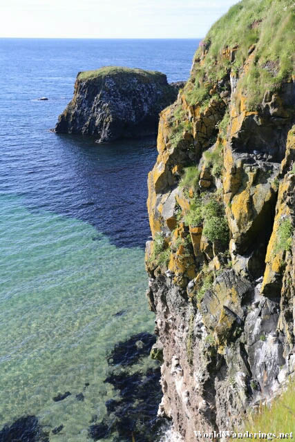 Home for Seabirds at Carrick-a-Rede Island