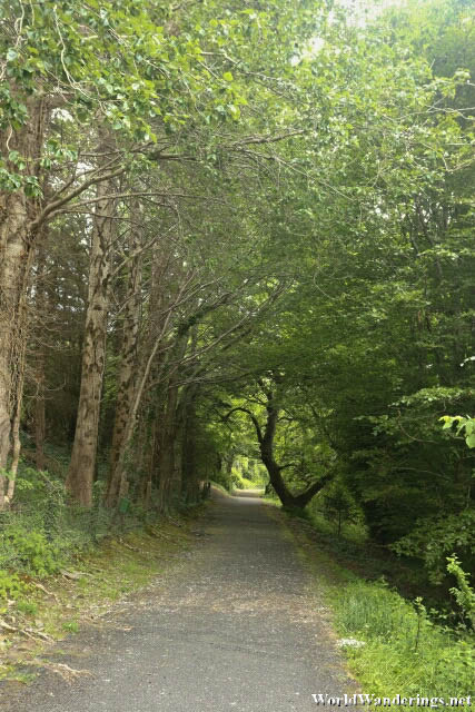 Covered Path of Ards Friary