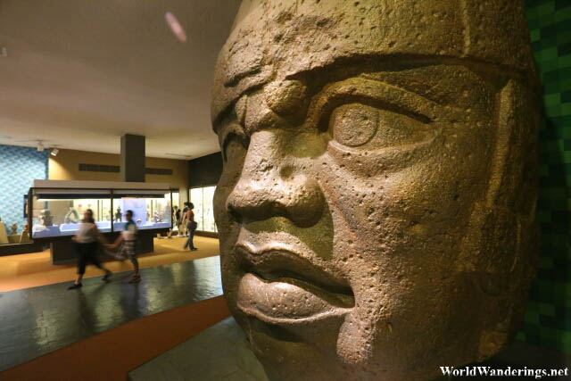 Giant Head of the Olmecs at the American Museum of Natural History