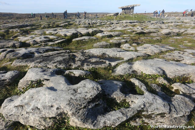 Poulnabrone Dolmen in the Distance at the Burren