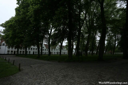 Green Area the Beguinage in Bruges