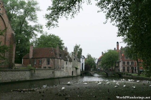 View of the Canal at the Beguinage in Bruges