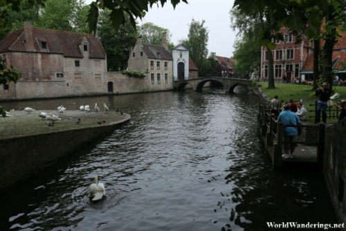 Canal at the Beguinage in Bruges